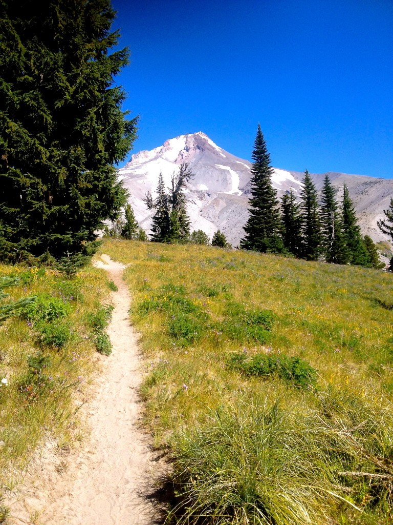 En approche du célèbre et magnifique Mont HoodIMG_2426