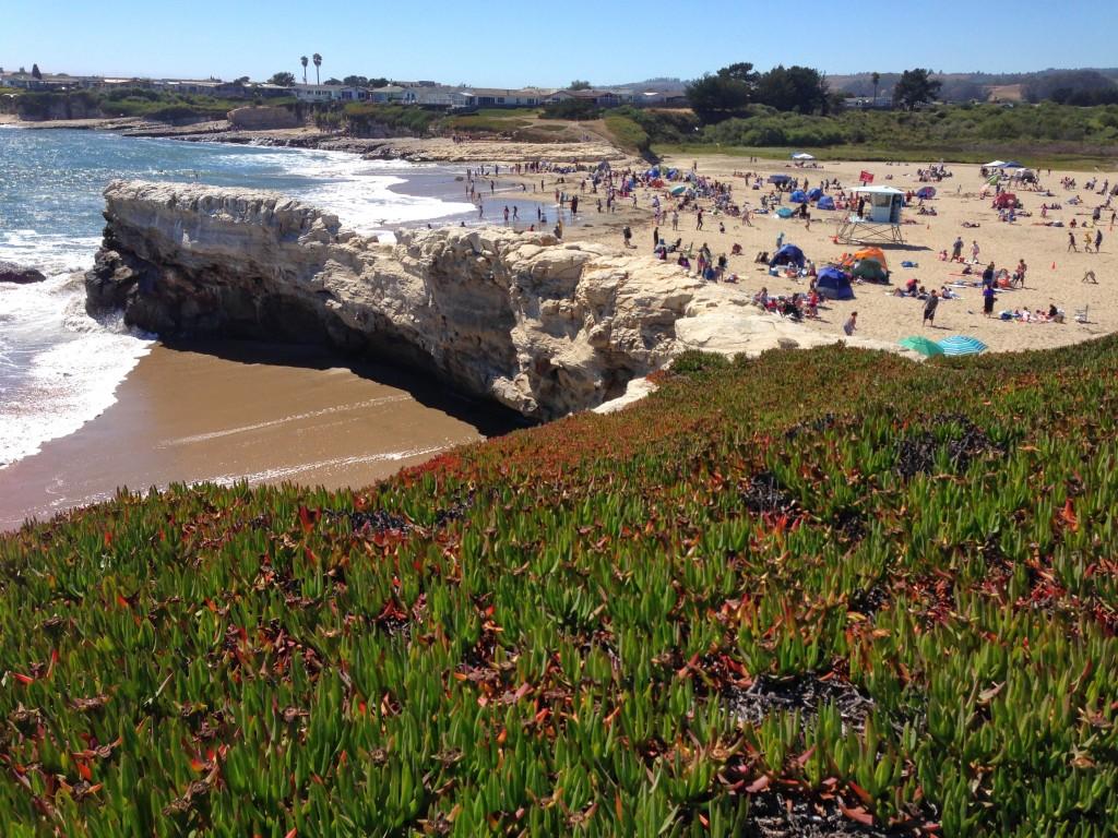 Santa_Cruz_Natural_Bridges_beachgoers