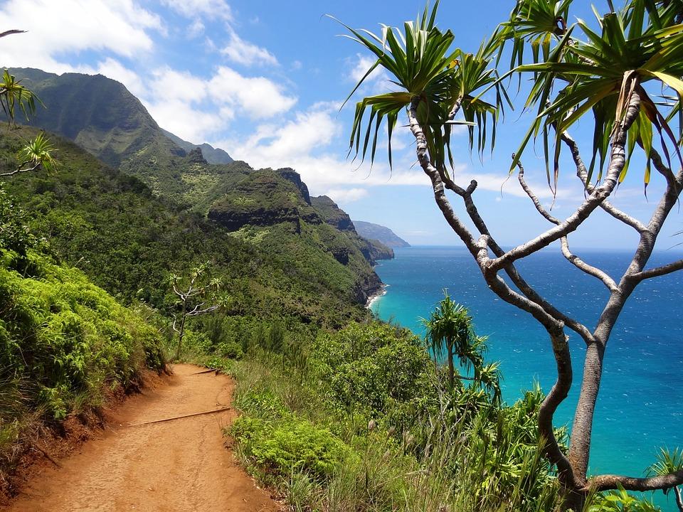Nature Napali Coast Kauai Nawiliwili Hawaii